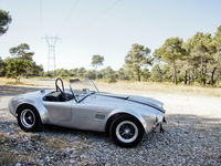 Photo SHELBY COBRA 289