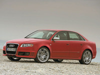 photo de Audi Rs4 (3e Generation)