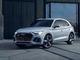 Tout sur Audi Sq5 (2e Generation)