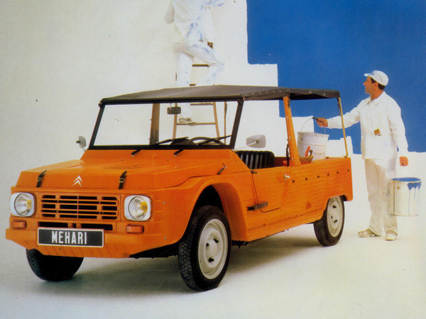 argus citroen mehari 1976 e. Black Bedroom Furniture Sets. Home Design Ideas