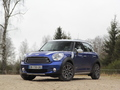 Avis Mini Countryman