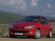 Tout sur Peugeot 206