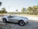 Tout sur Shelby Cobra 289