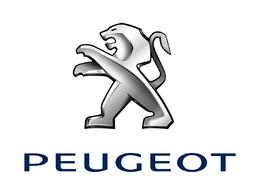 Inauguration du chantier d'une future usine Peugeot en Inde