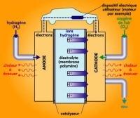 CEA de Grenoble : de l'hydrogène produit sans platine !
