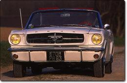 Le phénomène Mustang