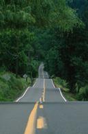 Sécurité routière : moins de morts sur les routes en février