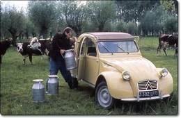 Citroën 2 CV (1948-1990) : Le triomphe de la modestie