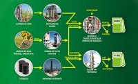 Le Brésil mise sur le biodiesel