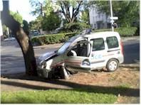 Police municipale + arbre => mauvais ménage