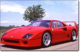 Ferrari F 40 : la quarantaine rugissante