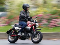 Essai Honda Monkey 125 : le plaisir à tout prix