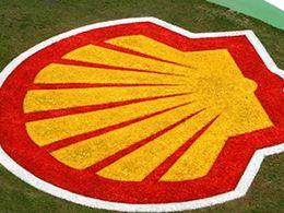 Shell : les biocarburants vont devenir «l'alternative la plus importante aux énergies fossiles dans les 20 prochaines années»