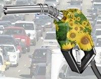 La Belgique et le biodiesel : une affaire qui roule
