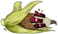 Ethanol aux Etats-Unis : le tarif douanier au coeur du débat