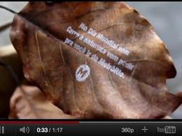 Des messages imprimés sur des feuilles d'arbres font la promotion des transports en commun