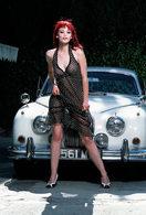 """Un strip très """"Jaguar"""""""