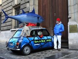 Greenpeace et la «thonmobile» bloquent le ministère de l'Agriculture et de la Pêche