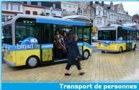 Bolloré et Gruau, main dans la main pour des Microbus écolos
