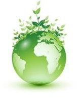 Site Internet Roulons propre roulons nature : une pétition pour que les véhicules Flexifuel bénéficient du bonus écologique