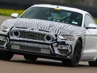 Officiel : la Ford Mustang Mach 1 va faire son retour