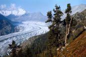 Suisse : l'association Initiative pour le climat a récolté plus de 150 000 signatures