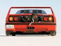 Ferrari F40 : Objectif 360 km/h sur un lac salé..
