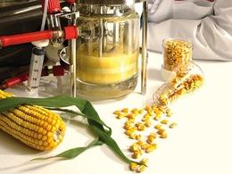 Les Etats-Unis dévoilent un plan pour booster la production de biocarburant