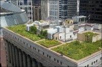 Chicago : les toits végétaux fleurissent pour lutter contre la pollution auto !