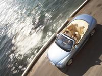Bentley Continental GTC : cabriolet, 4 places et 300km/h