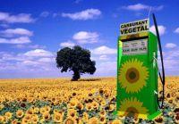 Etude/France : les biocarburants présentent un intérêt environnemental