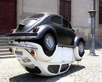 La photo du jour: Beetle Fusion