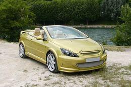 Peugeot 307 CC Esquiss'Auto : sous le soleil exactement