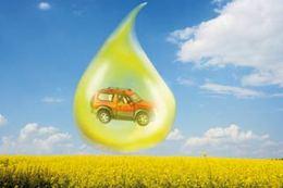 Biocarburants : il est urgent d'attendre pour les scientifiques !