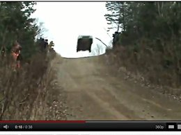 [vidéo] Une Honda Civic VTi ne monte pas que dans les tours
