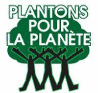 Pour lutter contre la pollution auto, plantez 7 milliards d'arbres !