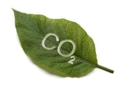 Des constructeurs en retard sur l'objectif 2012 des réductions de CO2