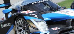 ALMS - Petit Le Mans : Peugeot repasse devant Audi