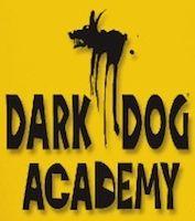 La Dark Dog Academy en stage à Thonon-les-Bains.