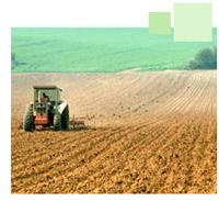 Agrocarburants : l'ADEME a élaboré une méthode plus juste pour évaluer leur impact environnemental