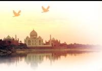 Inde : un policier veut verbaliser une star, il est muté...