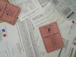L'assouplissement du permis à points adopté !