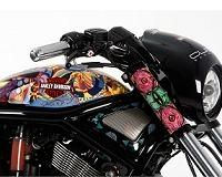 Insolite - Harley-Davidson: Un V-Rod out of Africa