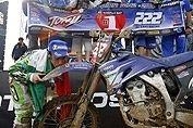 MX 2 : Cairoli champion du monde