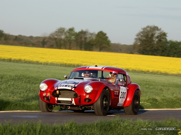 Photos du jour : AC Cobra (Tour Auto 2011)
