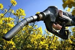 Les aides fiscales des biocarburants se réduisent en peau de chagrin