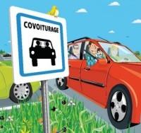 Comment les automobilistes Néo-Zélandais contournent la réglementation...