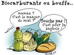 Vocabulaire : les biocarburants s'appelleront désormais « agrocarburants »