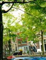Pays-Bas : un automobiliste roulait sans permis depuis 47 ans