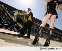Les filles du paddock : GP d'Espagne [+ vidéo]
